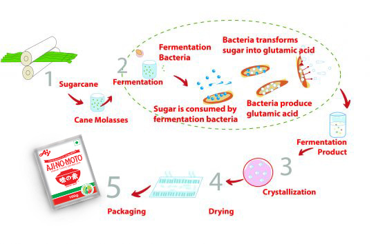 Ajinomoto_product_-process